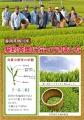 清本園様 - コピー.jpg