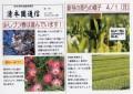 清本園通信2.JPG