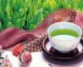 お茶表紙写真.JPG